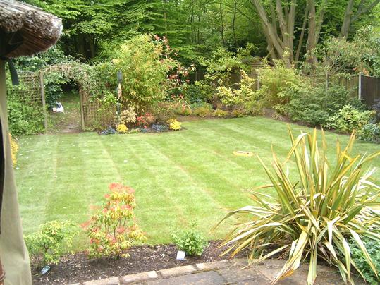 Lawn Care Essex