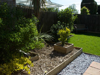 Turf Lawn Care Chelmsford, Essex